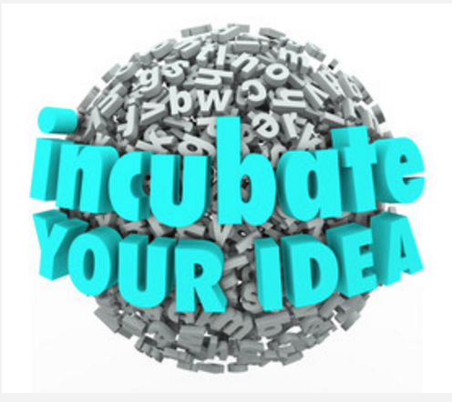 Incubate your great idea! Let Ideagist guide you