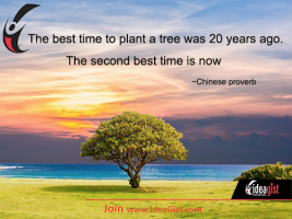Plant your tree now