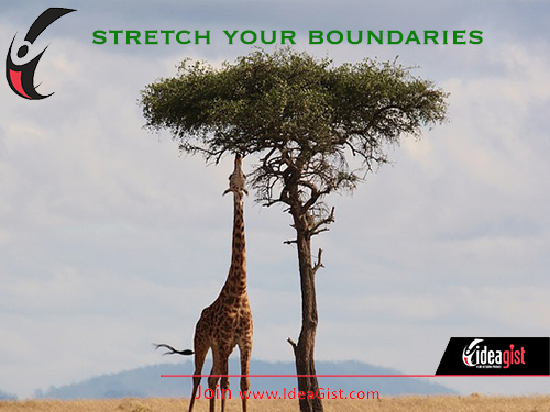 Stretch your boundaries by pushing beyond your comfort zone